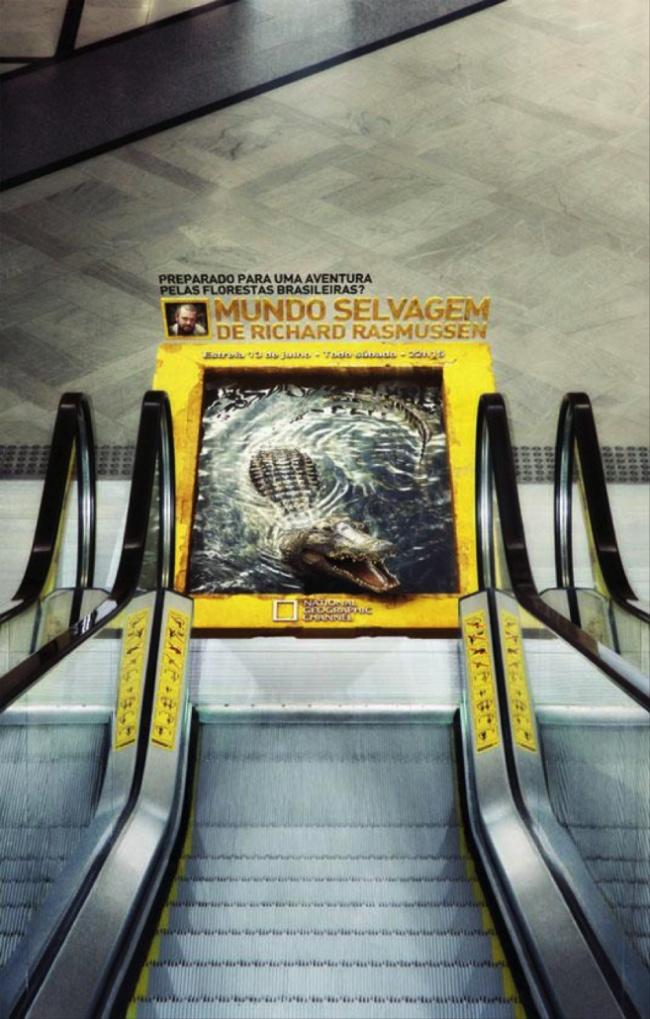 publicidade9